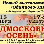 2Подмосковная-осень-2014-12