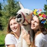 Международный фестиваль стола прошел в Одинцовском районе
